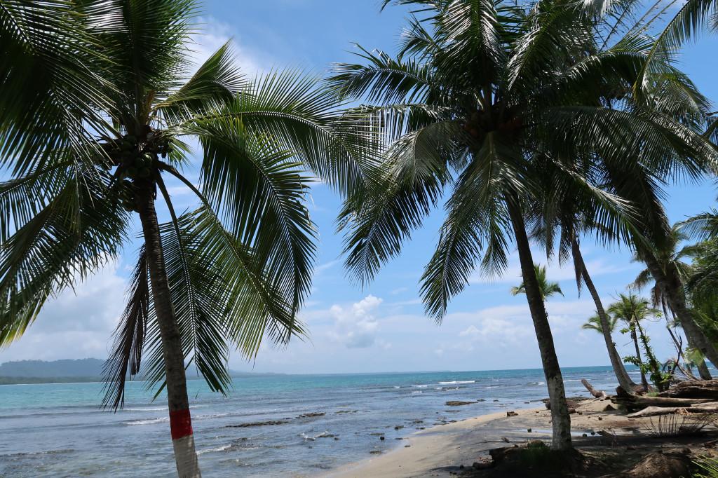 Strand in Puerto Viejo - Cost Rica