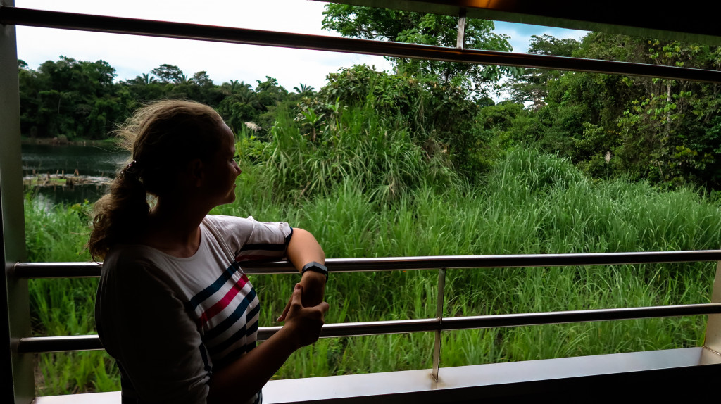Dschungel genießen