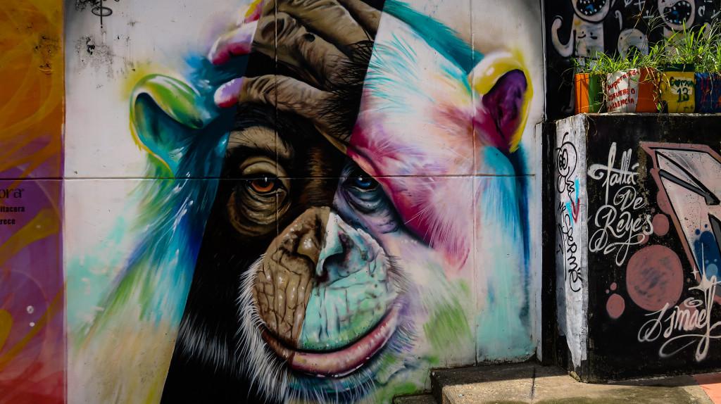 Streetart Affe Communa13