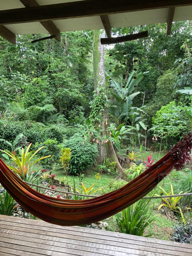 Dschungel-Unterkunft in Puerto Viejo