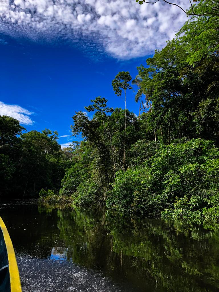 Amazonas Boot
