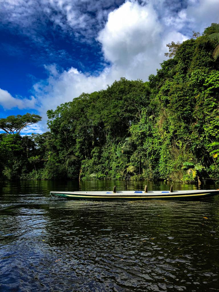 Kanu im Dschungel